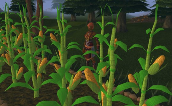 Seeds and Farming Patches