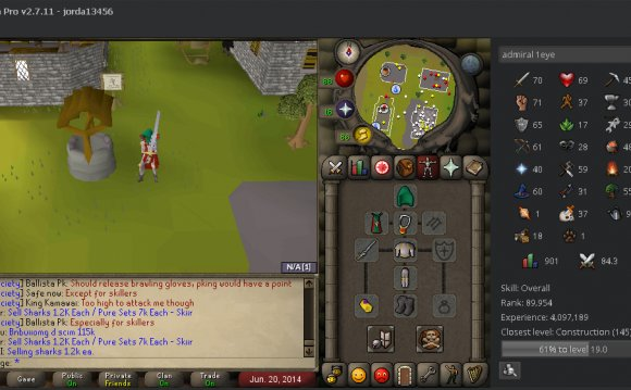 Old School RuneScape Training Guide
