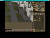 2007 Runescape account