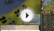 Download Free best runescape bot for mac