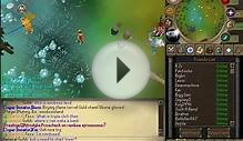 Runescape 317 Private server | RuneScape - Online Fantasy RPG