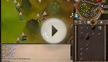 How to earn money in high risk wilderness world in runescape.