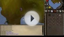 Old school runescape bot
