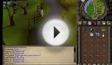 Runescape 2007 - How to kill Bronze Dragons