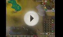 Runescape - Green Dragon Bot Killing Montage!